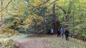 A handful of Oxbow Zen practitioners practicing outdoor kinhin among fall foliage.